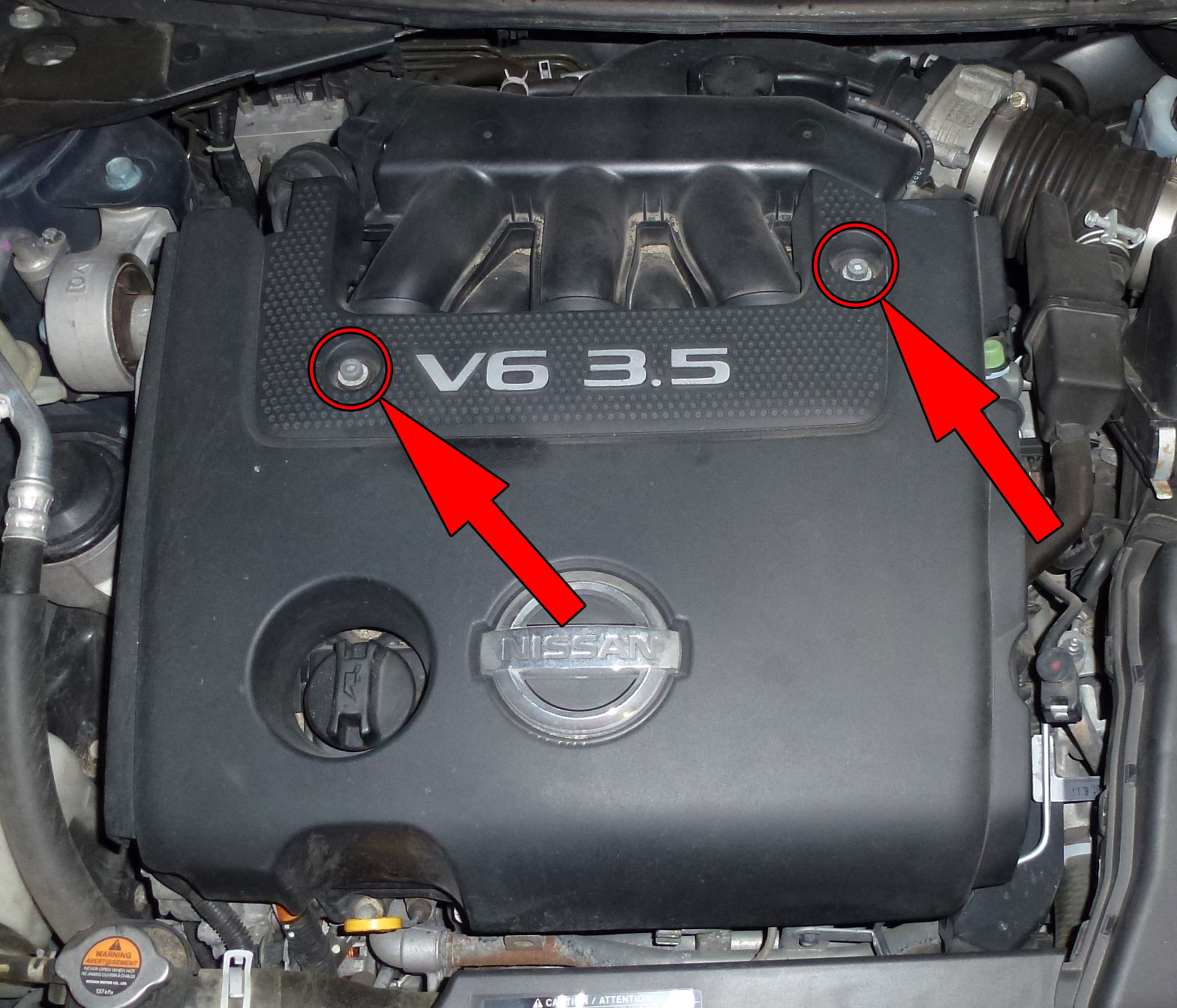 Start by removing the engine cover. Remove two allen bolts.