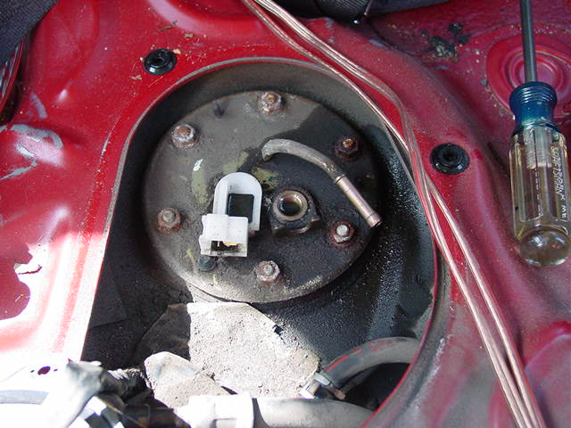 Remove the banjo bolt for the fuel feed line, and slide off the hose for the fuel return.
